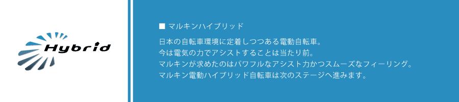 02_banner_04