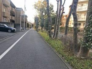 呑川柿の木坂支流緑道