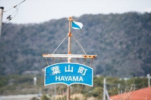 ヨットの帆を思わせる葉山町のマーク