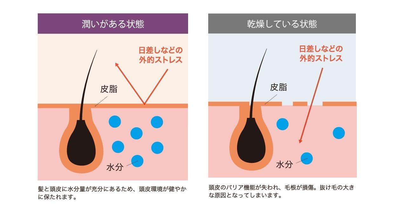 INZEAL-Shampoo06