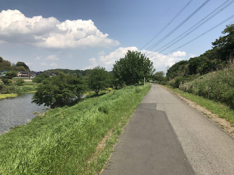 緑いっぱいの花見川サイクリングロード。もう少し花が欲しい