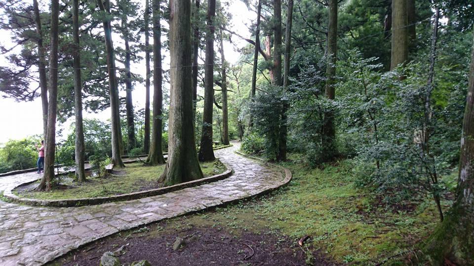 鳥居前に続く遊歩道もありますが苔むしたパヴェなので、自転車を担いで車道から階段を下りるのが無難です。