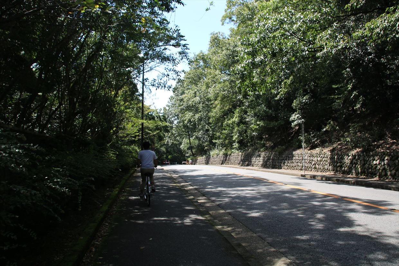 立命館大学の道沿いを走り龍安寺方面へ
