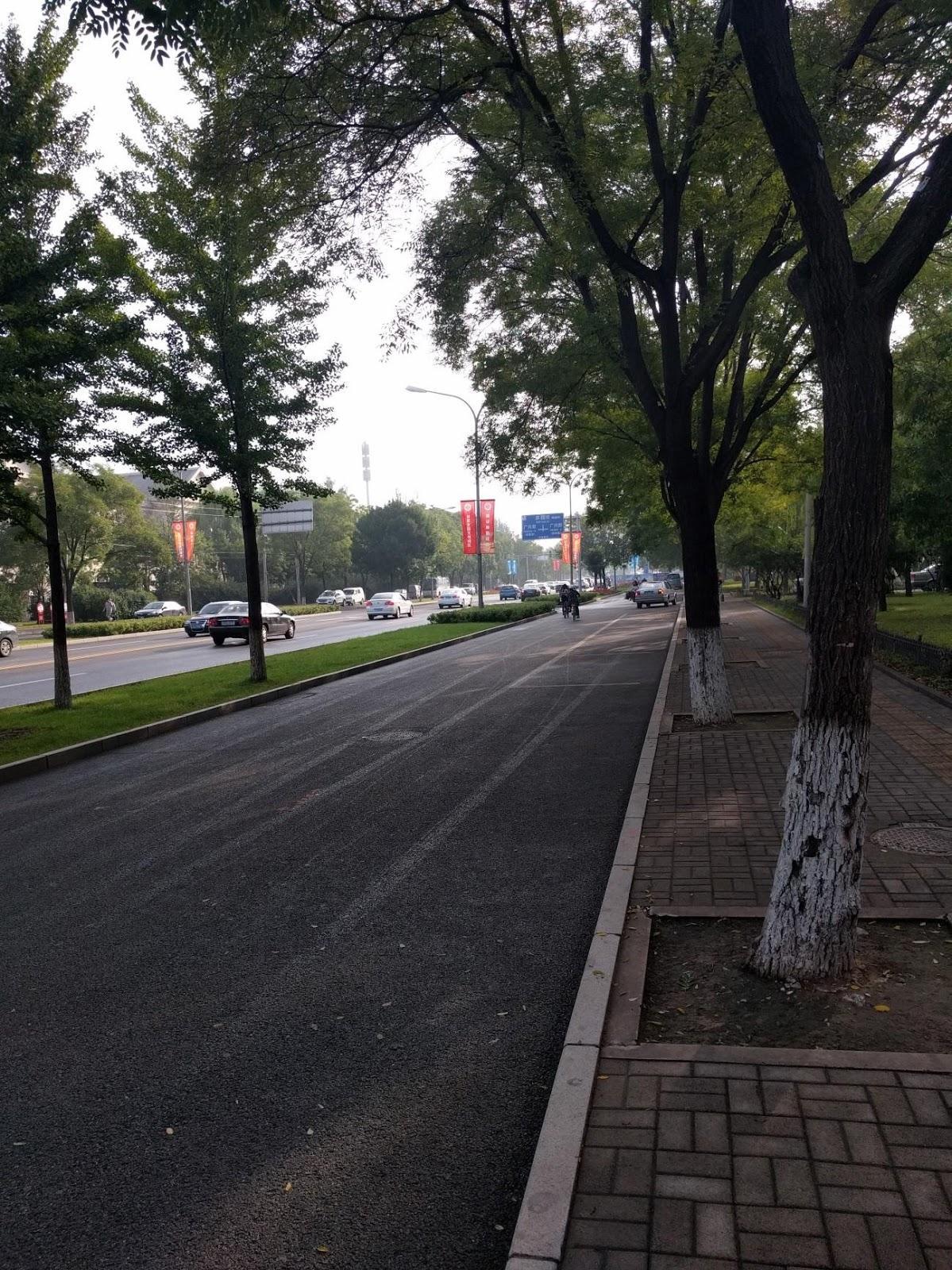 ▲北京のような都市部では、大通りに立派な自転車道が設けられている。