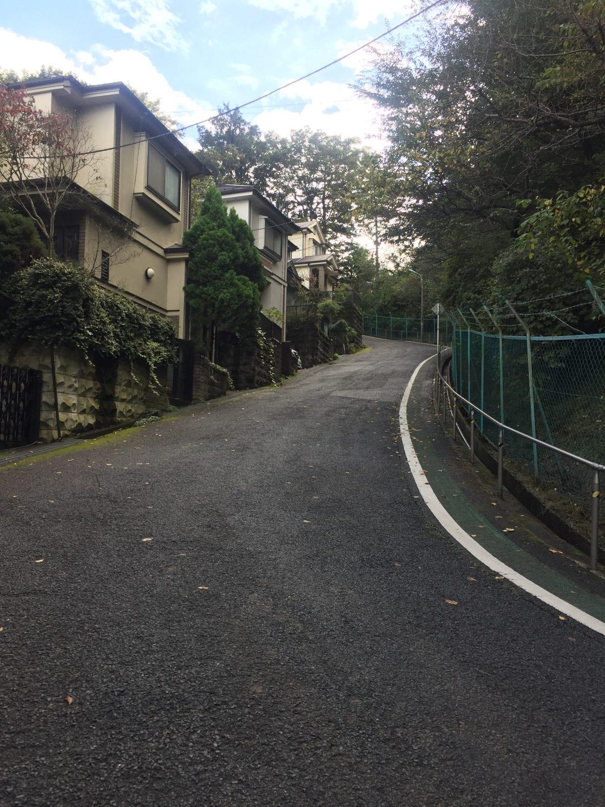 「京王百草園」に向かう激坂