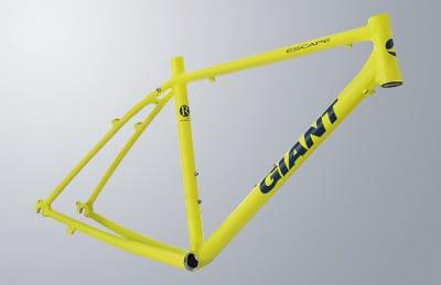 (C)GIANT