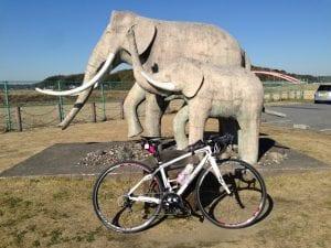 ナウマン象のオブジェのある双子公園。ここの駐車場を利用してランやサイクリングに行く人も多い
