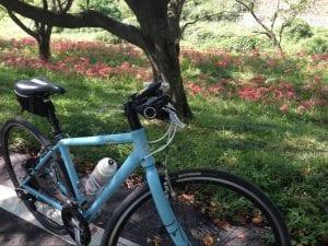 実践!自転車ダイエットのやり方