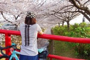 自宅から30分の距離にある桜並木を見にいくポタリング。
