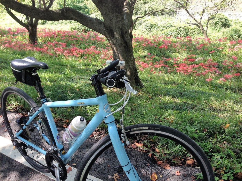 クロスバイク GIANT 選び方 イメージ