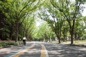 駒沢オリンピック公園(東京都世田谷区)