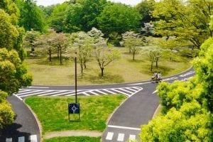 国営昭和記念公園(東京都立川市)