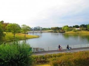 国営ひたち海浜公園(茨城県ひたちなか市)