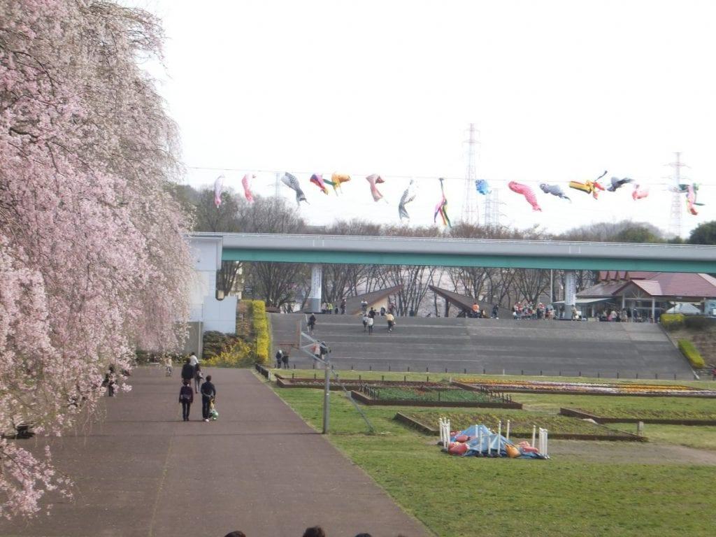 横浜 こどもの国