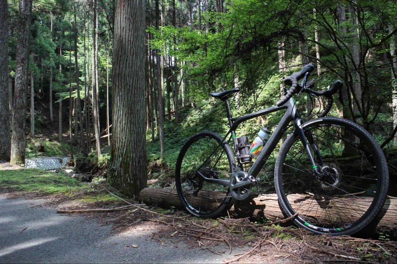 グラベルロード 魅力 森林