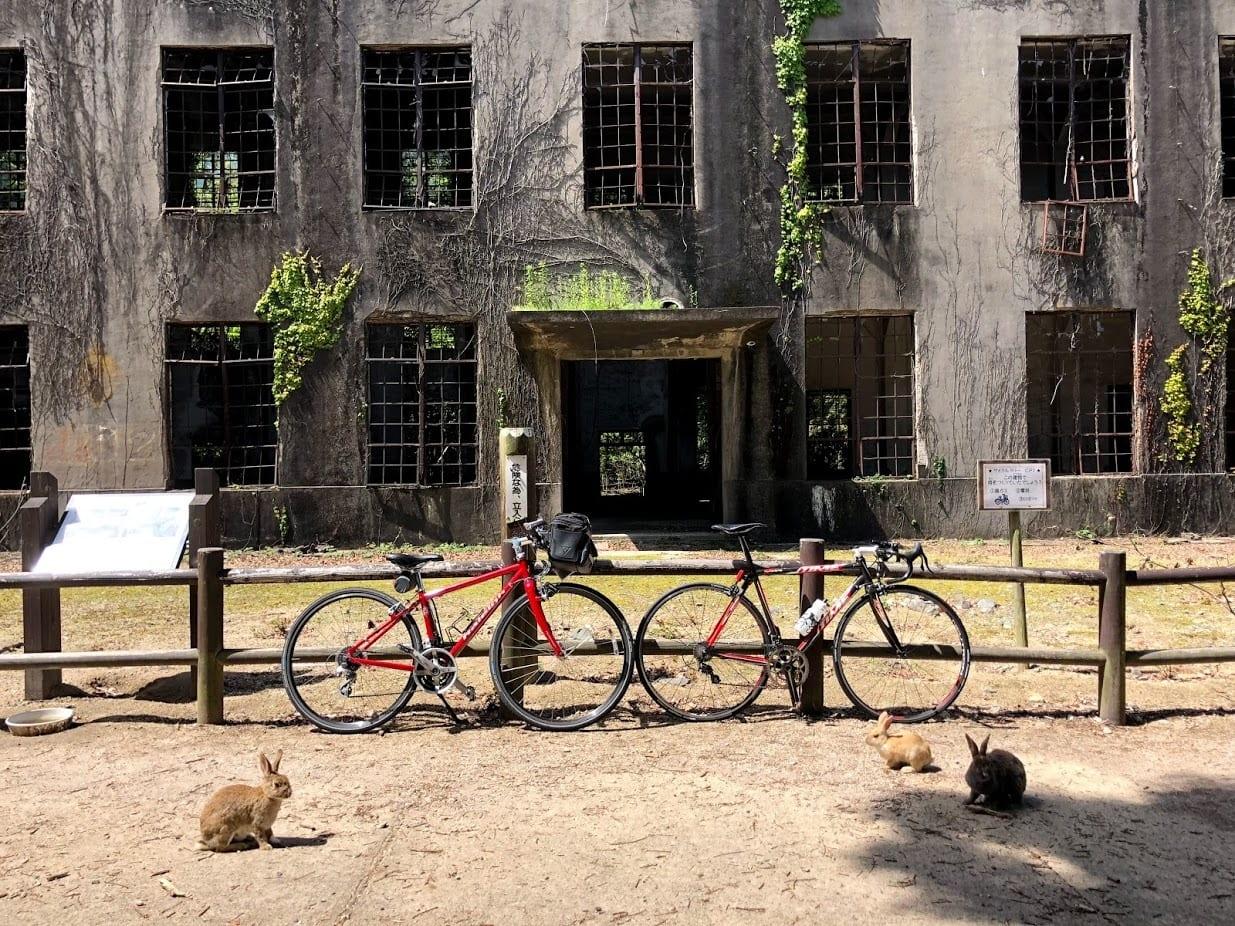 広島県竹原市にある大久野島は第二次世界大戦中に使用された毒ガス兵器工場の跡が残っています。今やうさぎ島として人気ですが、当時の面影を色濃く残した歴史的価値の高い島でもあります。photo:神楽坂つむり