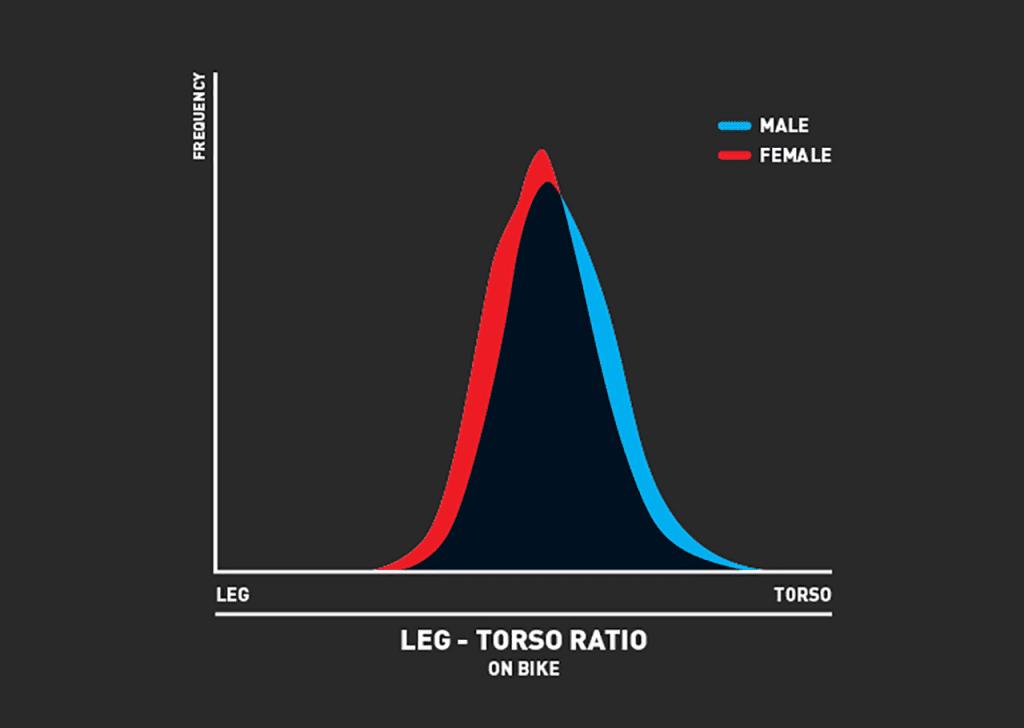 男女別に見た胴と脚の長さの比率
