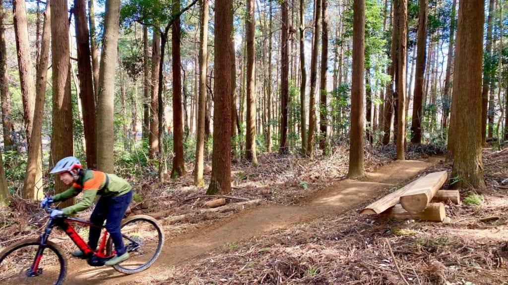 自転車で森を満喫