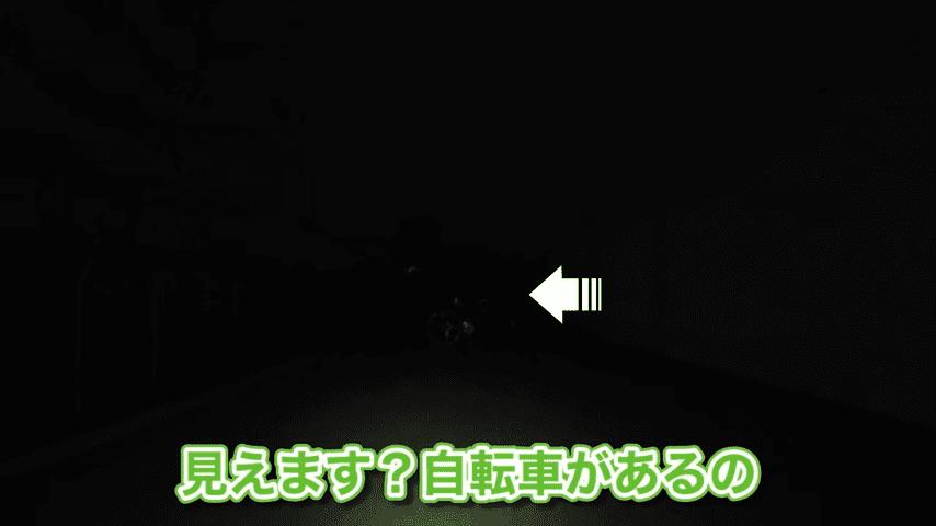 街灯のないところだと200ルーメンでは明るさが不十分