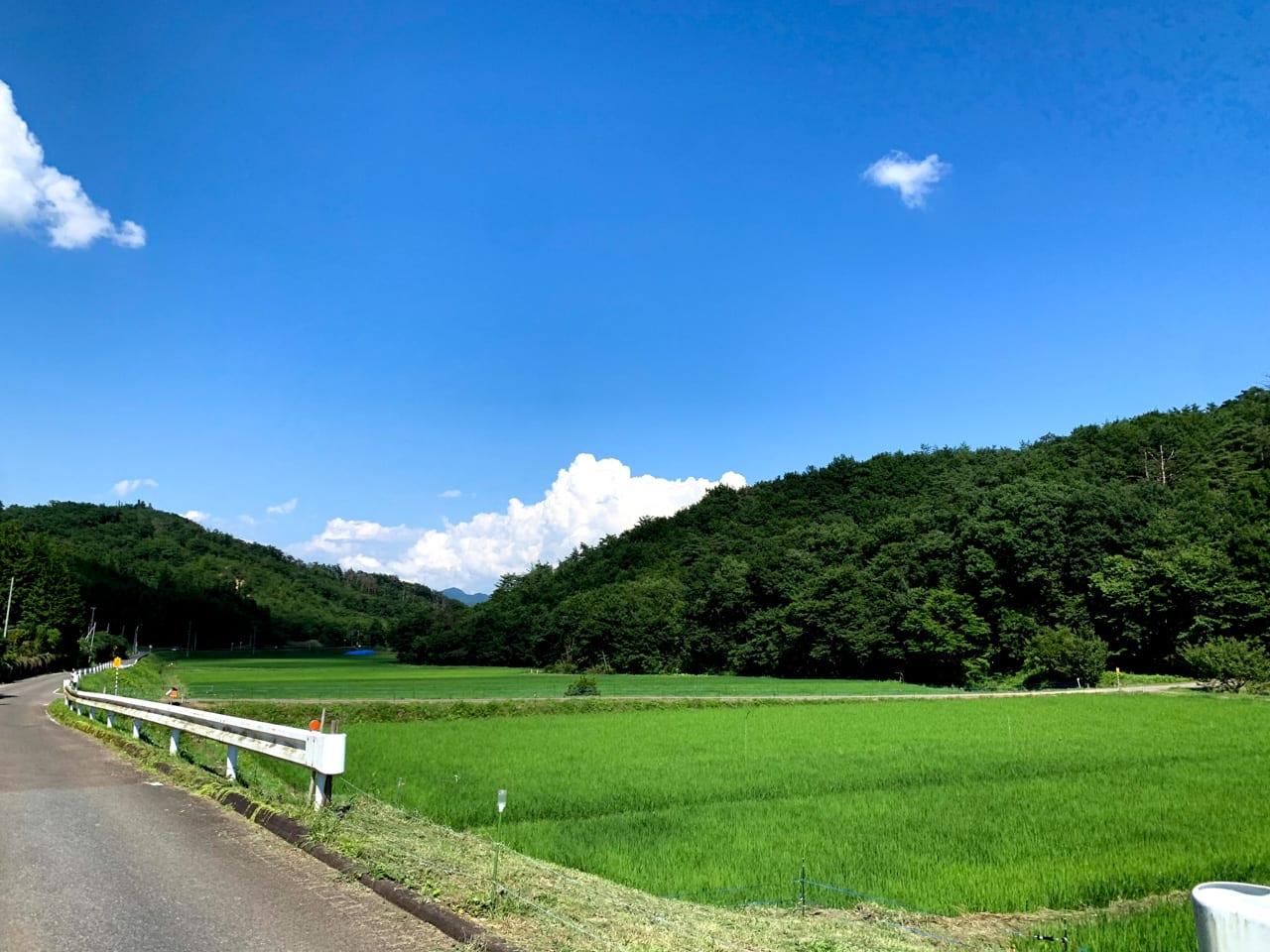 日本らしいのどかな田園風景が続く