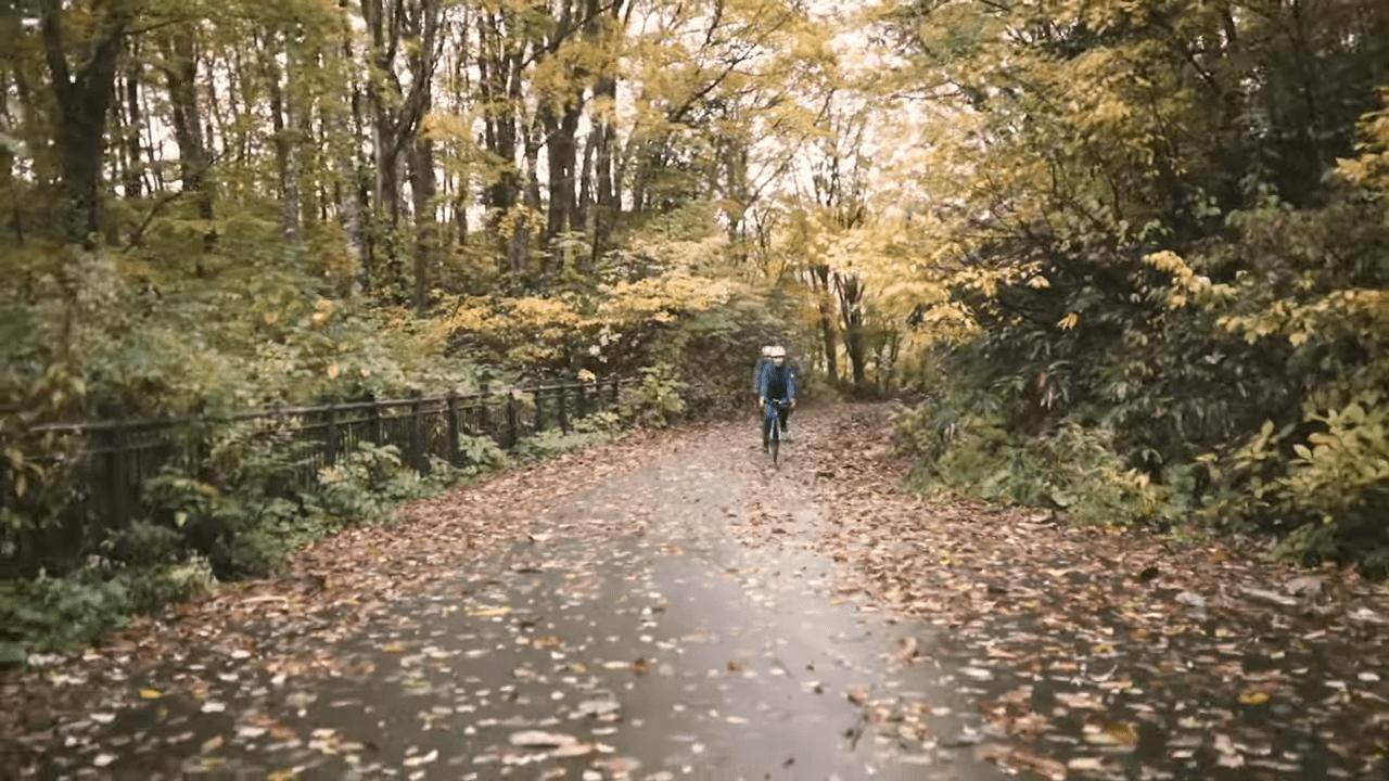 この時期ならではの落ち葉の絨毯の上を走行。きれいですが、スリップにはご注意を。